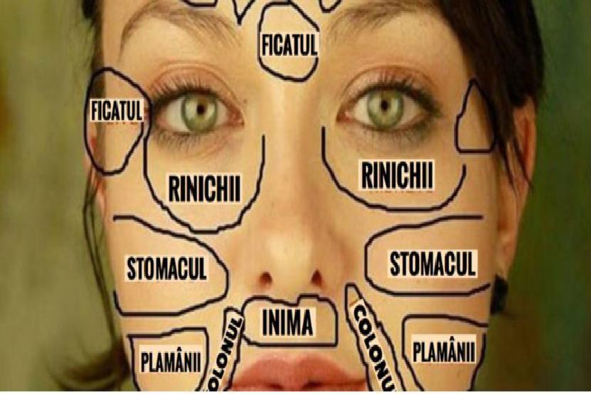 harta chinezească a feței.
