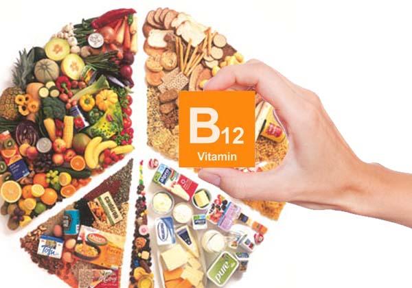 surse de vitamina B12