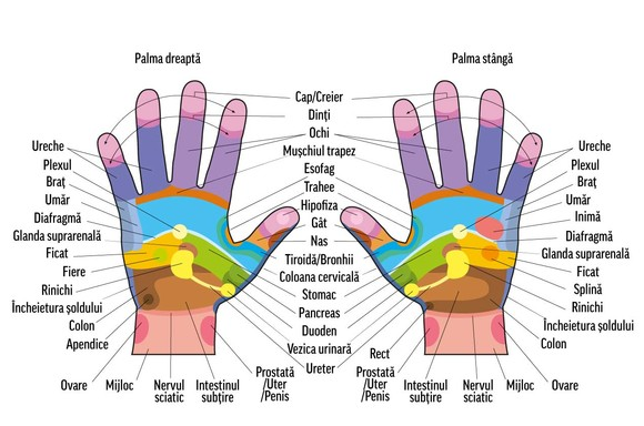 articulațiile degetelor mâinilor unui masaj dureri articulare helmintiaza